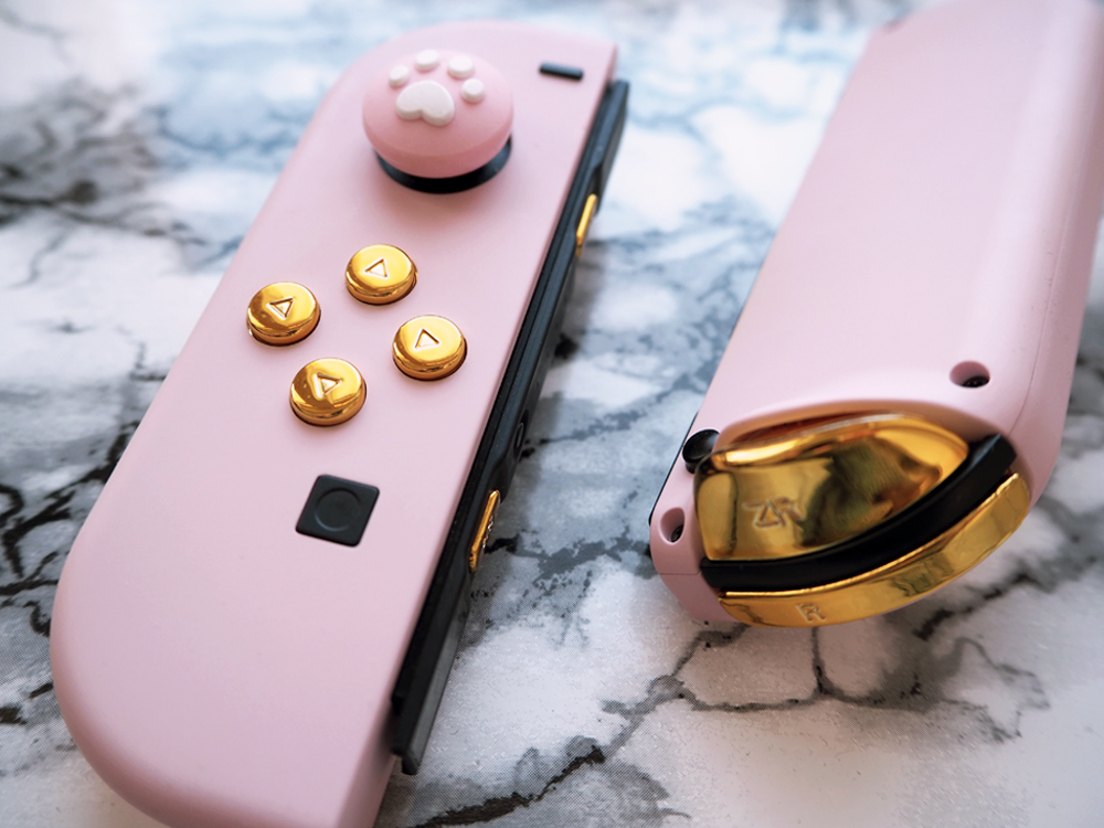 rosa custom joy cons